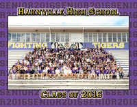 Hahnville Senior Group 2016